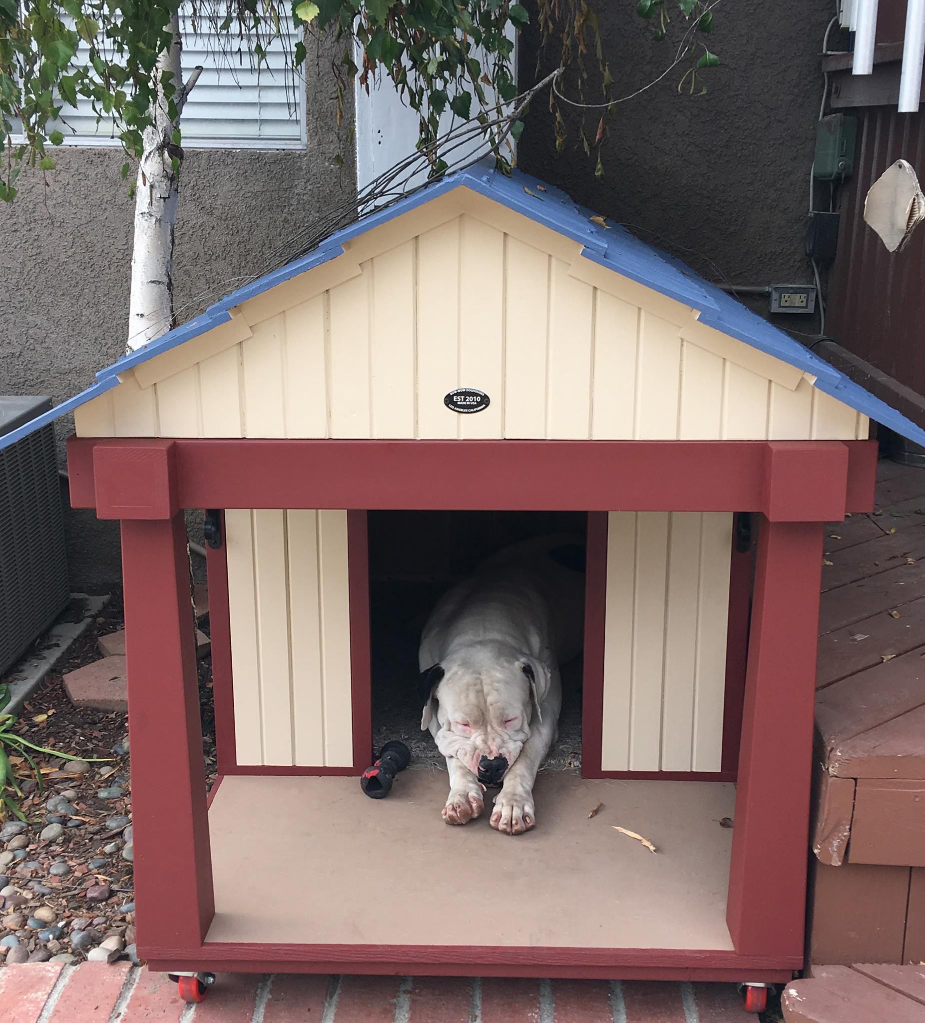 Photos Bow Wow Dog Houses